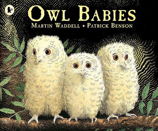 Owl Babies board book
