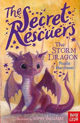 The Secret Rescuers Storm Dragon