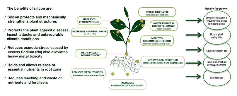 Agrisilica Demonstrated Benefits