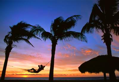 caribbean_hammock.jpg
