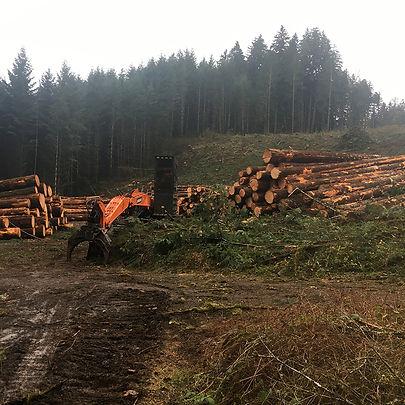 Benton County Logging.jpg