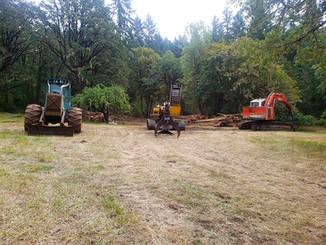 Soap Creek Oak Release