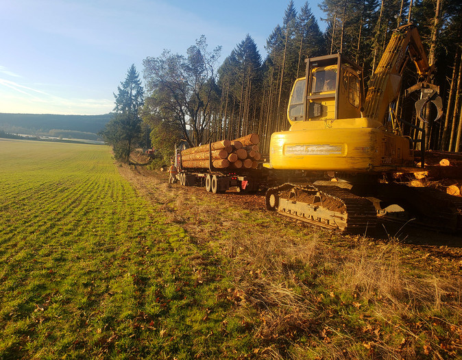 Oregon Partial Tree Thinning