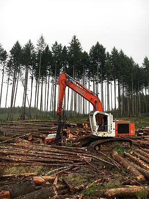 Log Final Harvest, Oregon