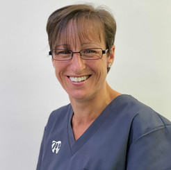 Wheathampsted Dental Nurse