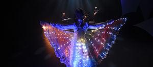 spectacle lumineux, led, laser, show