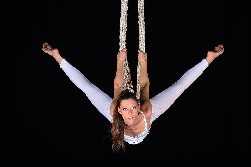 acrobate, aérien, filet, cirque