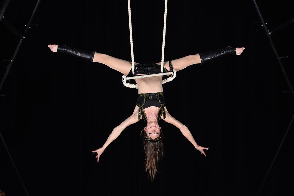 acrobate, aérien, trapèze, cirque