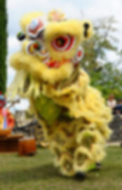 Danse du lion, acrobate chinois, dragon