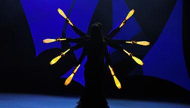 spectacle lumineux, son et lumière, LED