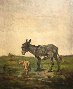 L'âne et le mouton