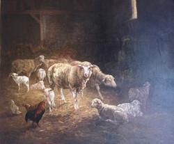 Les moutons à la bergerie avec le coq AN