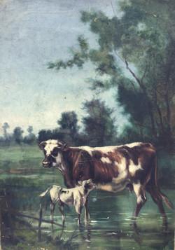 La vache et son veau