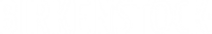 BIR_Logo_WHITE-NO TAGLINE.png