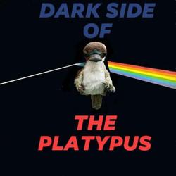 Dark Side of the Platty