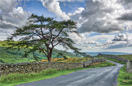 Lake District Country Roads.jpg