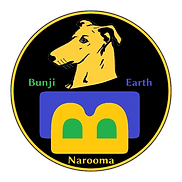 Bunji_Earth_Button_fertig-3-removebg-preview.png