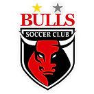 Logo-Square-BullsSC.jpg