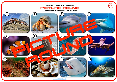 Sea-Life Picture Round