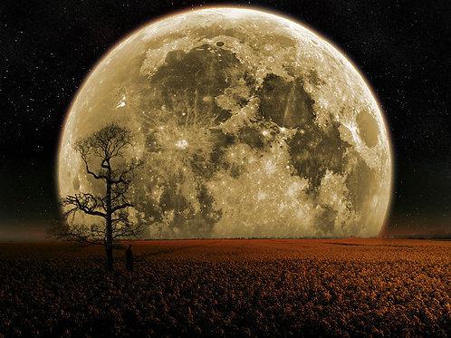 Full Moon Ritual Incense #3 50g