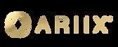 ariix logo.png