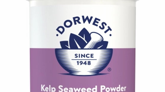 Kelp Seaweed Powder For Dogs And Cats  - Dorwest Herbs