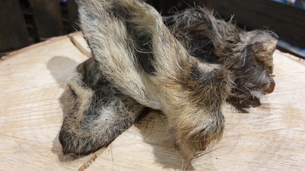 Venison Ear With Fur (Single) Meadow Farm