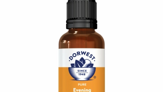 Evening Primrose Oil Liquid For Dogs And Cats - Dorwest Herbs
