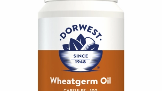 Wheatgerm Oil Capsules For Dogs And Cats  - 200 Tablets - Dorwest Herbs