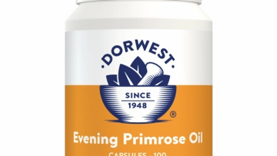 Evening Primrose Oil Capsules For Dogs And Cats - Dorwest Herbs