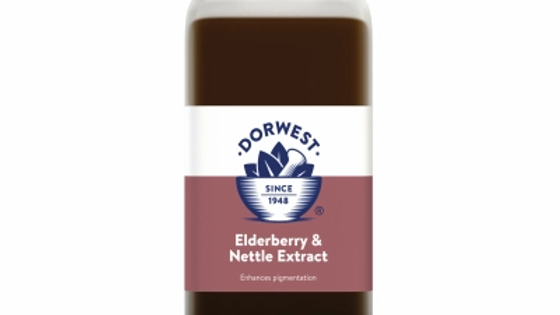 Elderberry & Nettle Extract For Dogs And Cats - Dorwest Herbs
