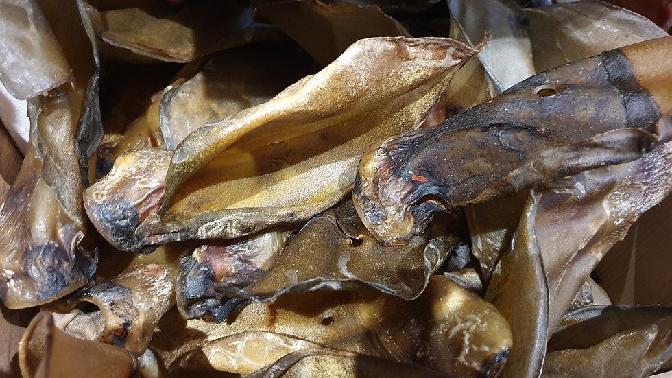 Buffalo Ears bulk x 10, Meadow Farm