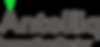 שקוף- כיתוב אפור.png