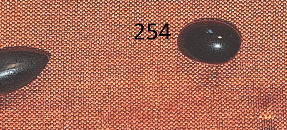 CS.N.064 - Copia.jpg