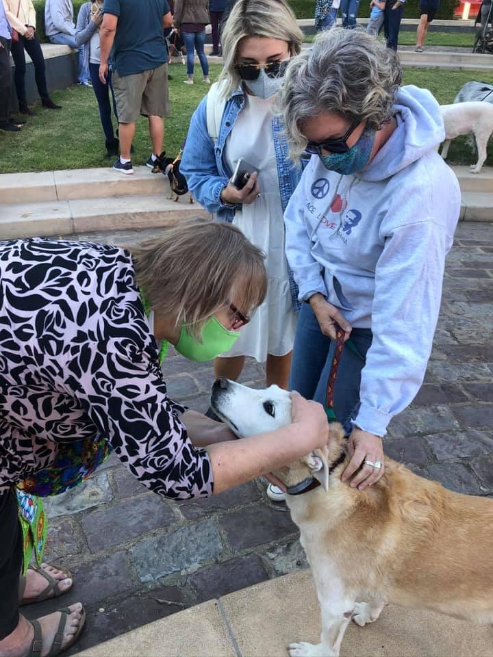 Mo cheryl blessing pets.jpg