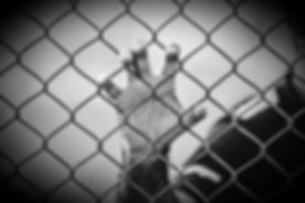 unsplash-1r0TPtmhEZA_edited.jpg