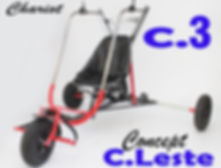C3..jpg