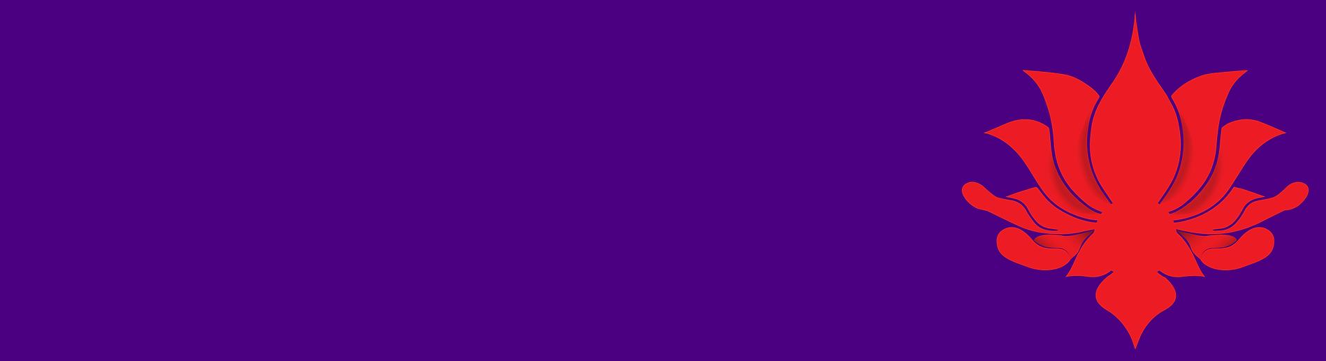 Purple solo.png