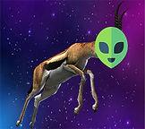 space_gazelle.jpg