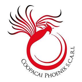 copacai phoenix