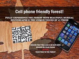 Cell phone friendly forest!