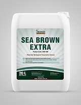 Sea Brown extra.png