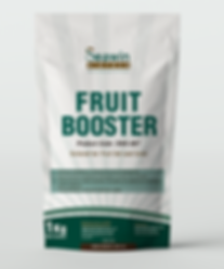 Fruit Booster mock up.png