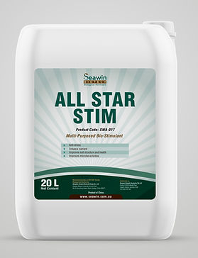 All Star Stim-mock-up更改后.jpg