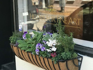 Charming Charleston Window Box