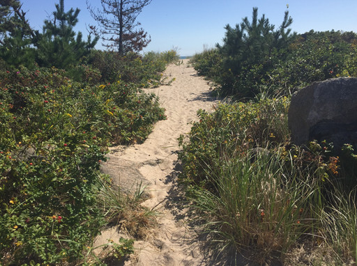 Reimagine Your Path