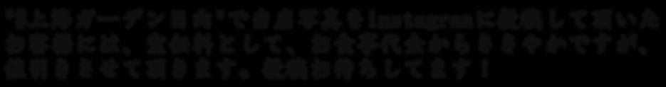 freefont_logo_tkaisho-gt01 (24).png