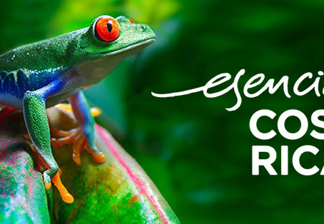 Delivering on Nation Branding: Costa Rica from One Visitor's Perspective.