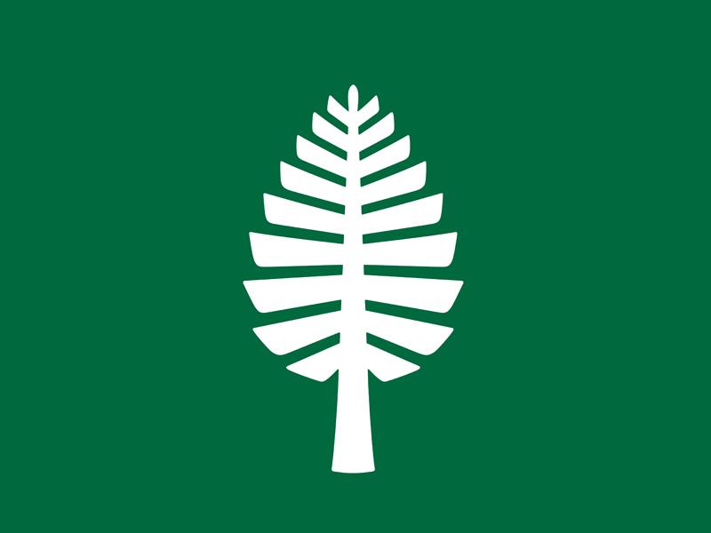 Dartmouth Lone Pine icon