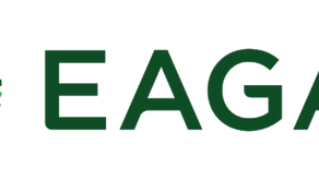The City of Eagan: An Outlet for Beautiful Community Rebranding
